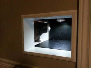 Diy Cat Tunnels Doors Pass Through Bypass Between